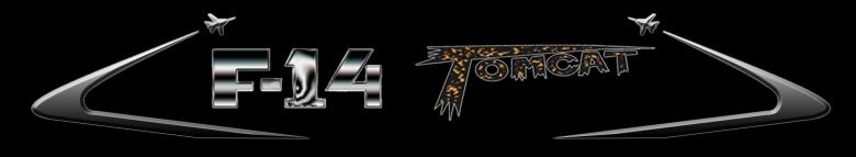 f-14 banner